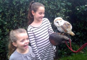 Mark Wiles Animal Parties and Wildlife Encounters